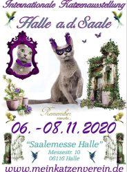 halle-11-2020